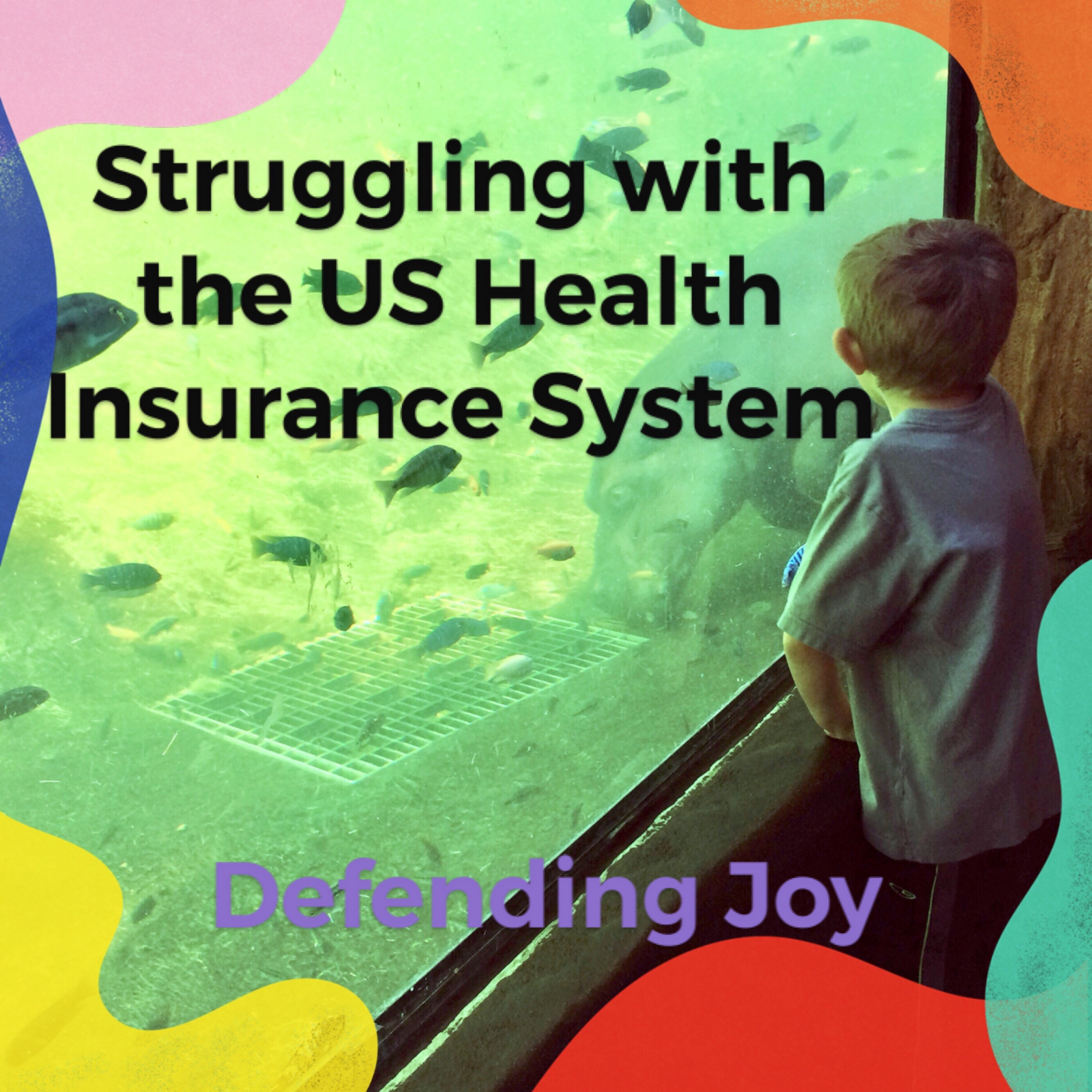 Struggling with the US Health Insurance System: Defending Joy, photo shows a child from behind looking off into an aquarium